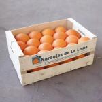 Yafer_naranjas_de_la_loma_naranjas